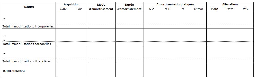modele de registre des immobilisations