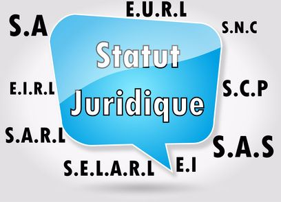 elements juridique business plan